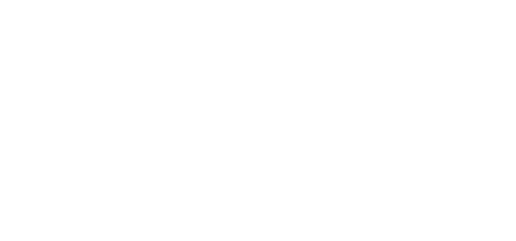 De Festival Groep